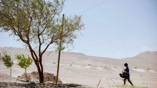 Recorrido por el nuevo cine argentino